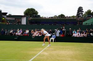 <b>�E�C���u���h��</b>(<b>Wimbledon</b>)3�A�C�M���X(England): �q��_246�̃u���O